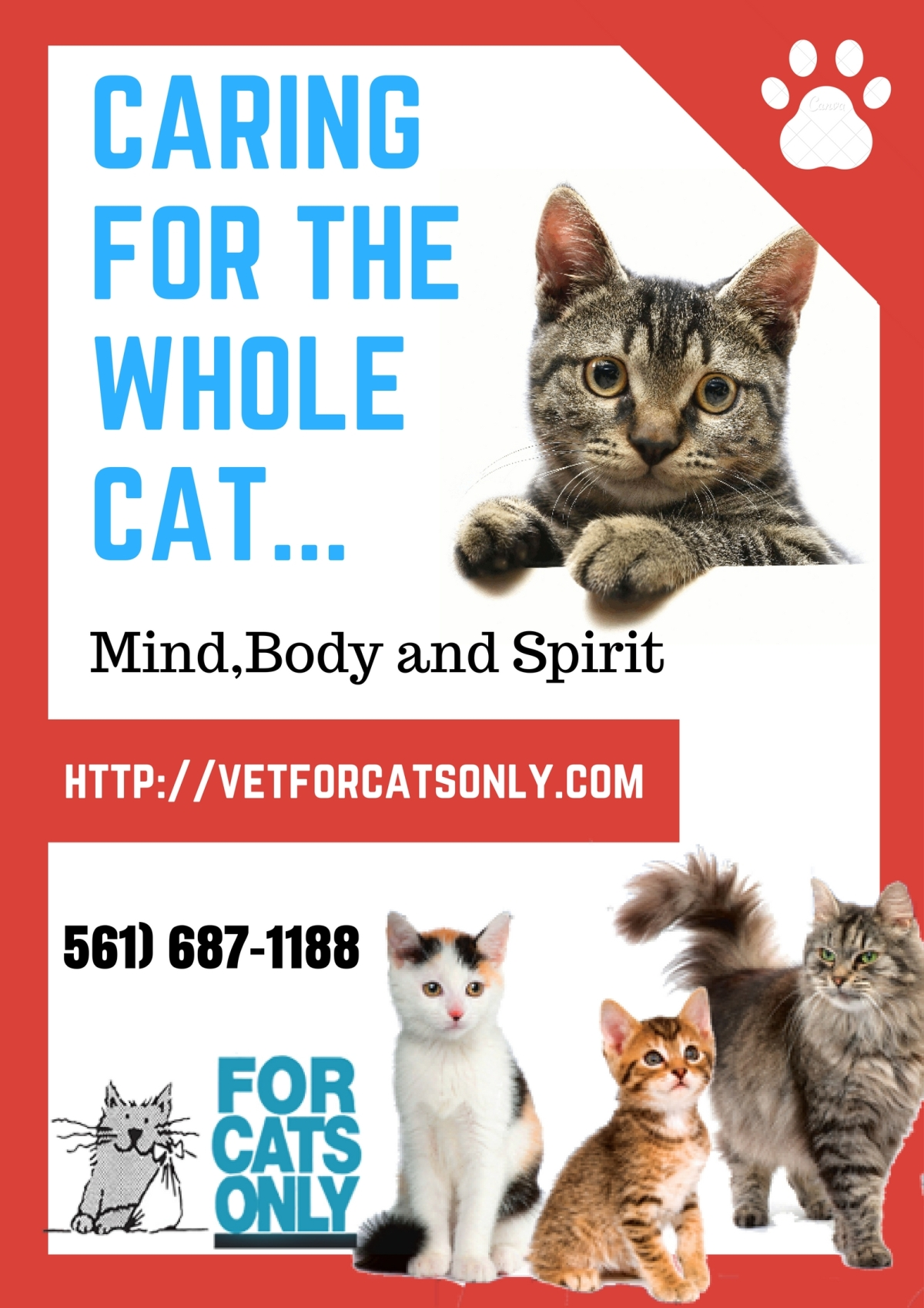 Cats Care Service in West Palm Beach.jpg